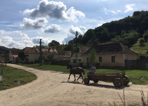 One of many horse-drawn cart sightings in Romania